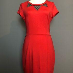Dresses & Skirts - Women's Dress Size 8
